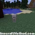 Minecraft Seed EARTH for version 1.0.0 | Animal