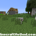 1.1 Minecraft Seeds| supermanreturns! | wolf near village