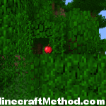 1.2.3 Minecraft Seeds | Artomix | Garden of eden?