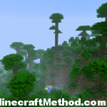 Minecraft Seeds | robinhood | spawn in jungle biome