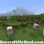 Minecraft | -6477892280881969750 | pink sheep!