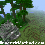 8491340278244839580 | jungle temple with view of village